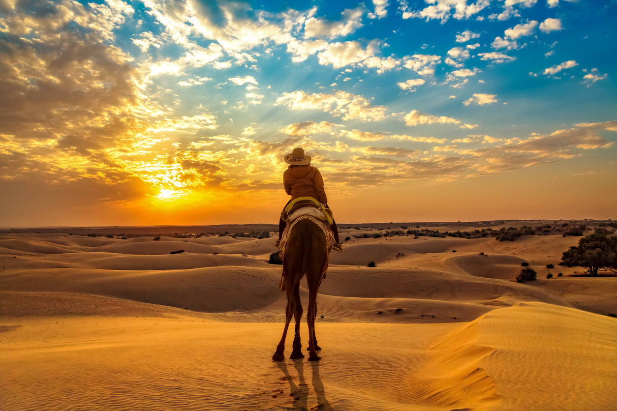 Immerse yourself in Jaisalmer's Reth Festival that is starting this month