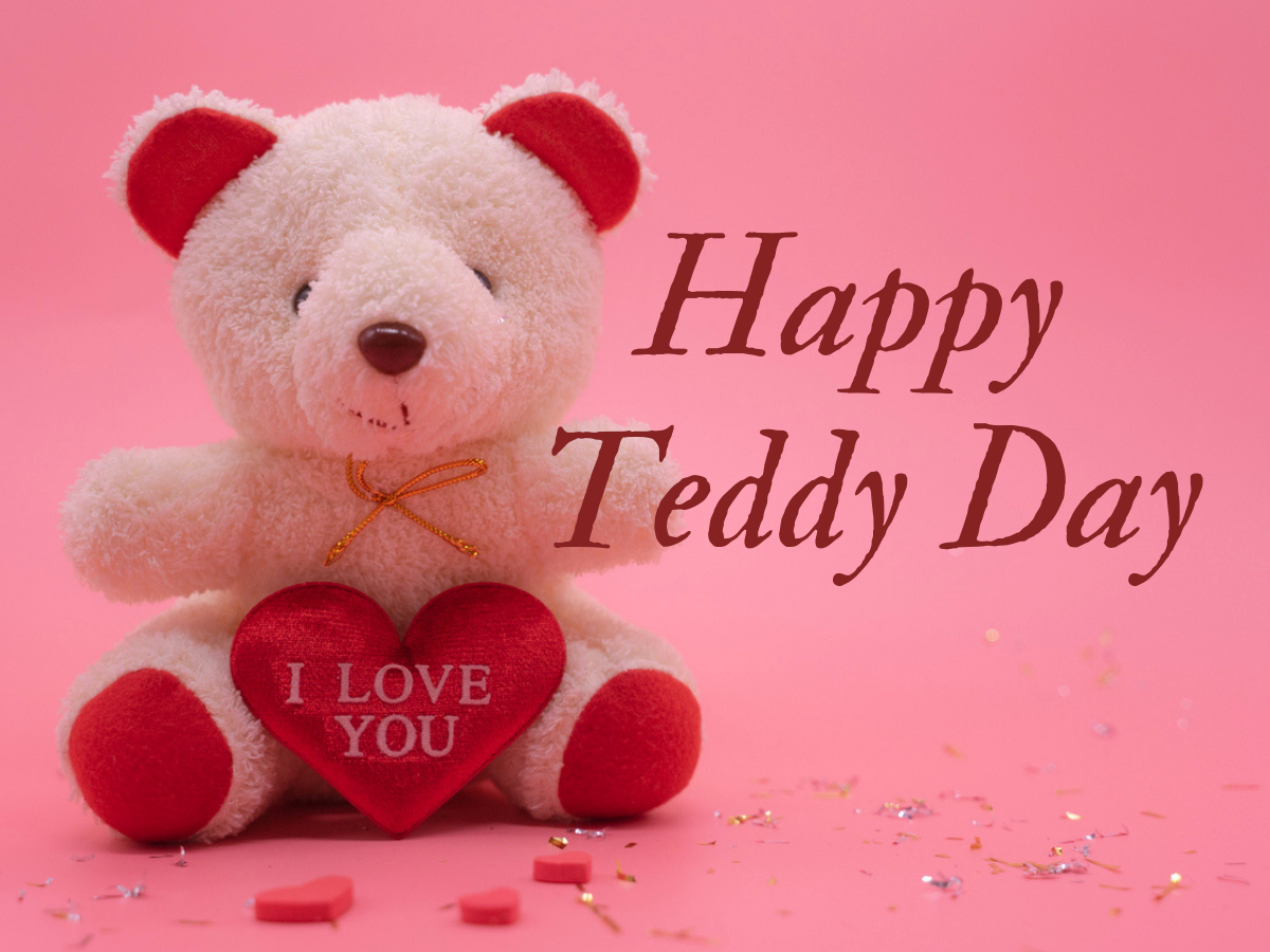 Image result for happy teddy day