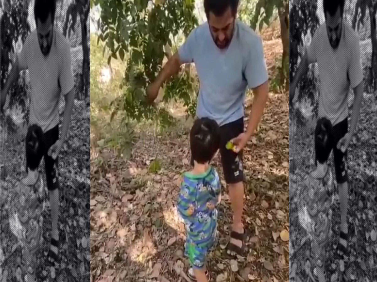 Salman Khan and Ahil going for fruit picking is the cutest thing you will see on the internet today thumbnail