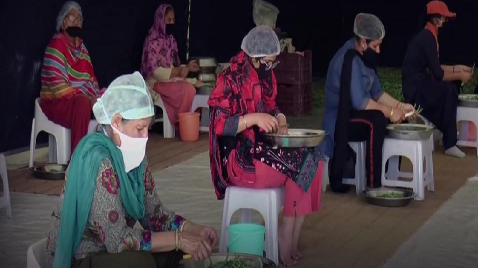 covid-19-crisis-radha-soami-satsang-beas-prepares-food-for-12-lakh-people-per-day-across-india