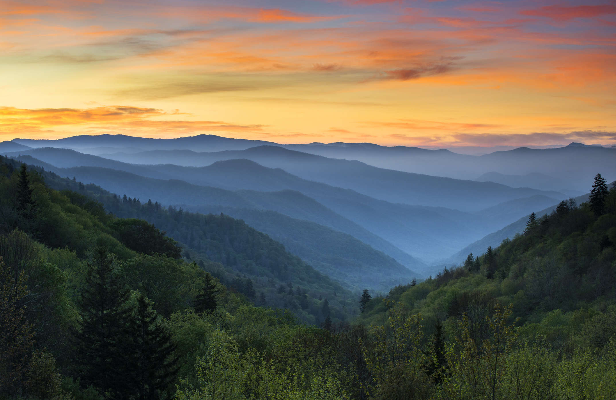 Go on a virtual hike of the Appalachian trail