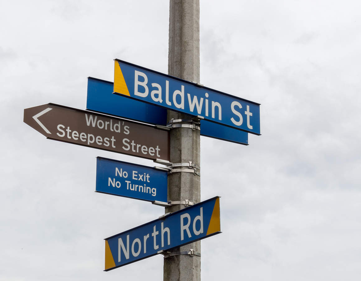 New Zealand street reclaims the title for world's 'Steepest Street'