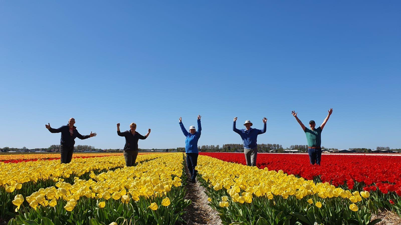 Dutch tulip farmers spread positive message with their flowers