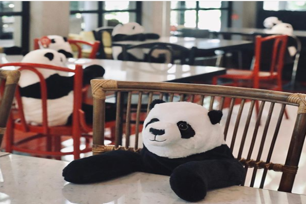 COVID-19: Guests dine in the company of cute pandas at a restaurant in Bangkok