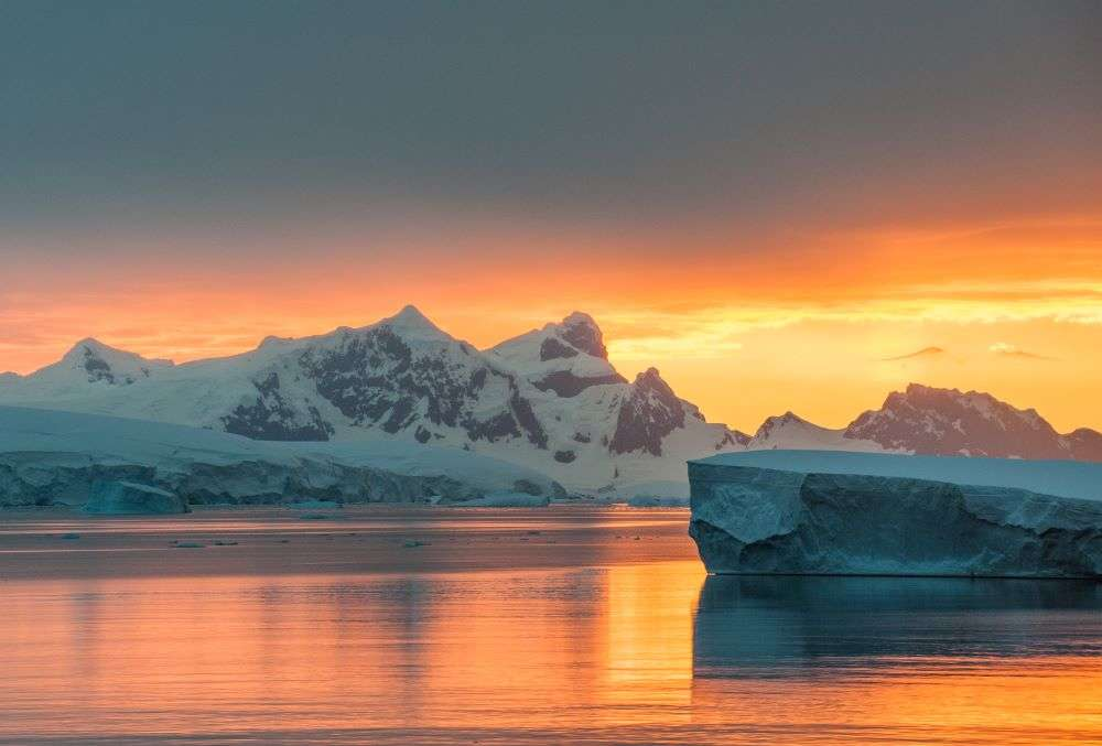 Antarctica is turning green. Know why
