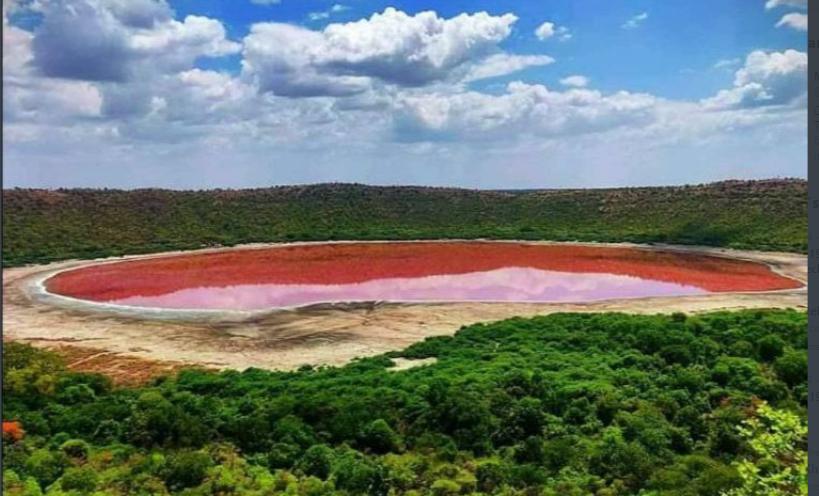 Maharashtra's Lonar Lake turns pink; officials stunned