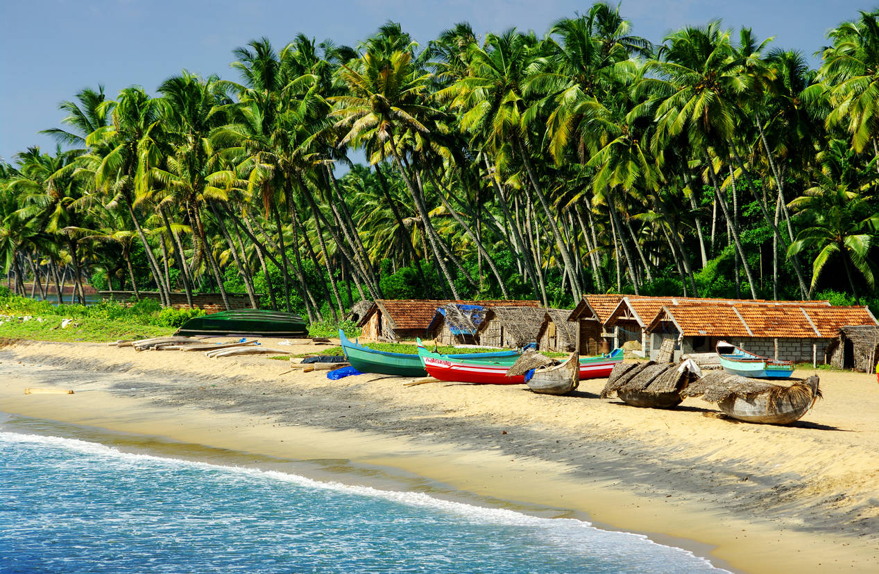 Goa reopens to tourists from today; rules that travellers must know
