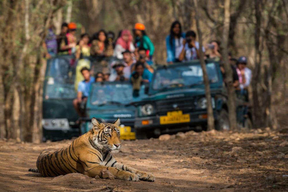 Madhya Pradesh launches 'Intezaar Aapka' campaign to attract tourists