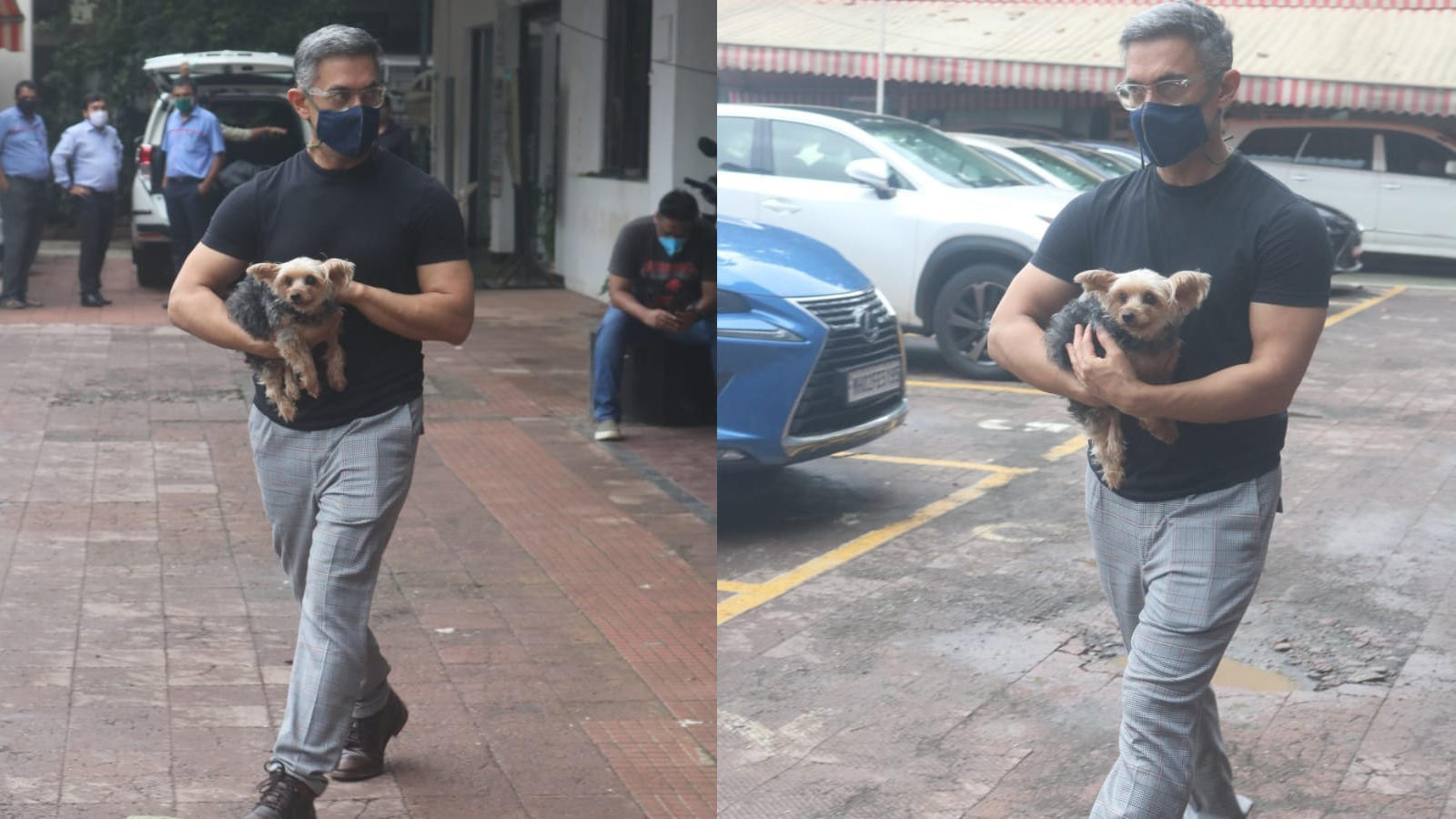 aamir-khans-grey-hair-gets-attention-as-he-steps-out-with-his-dog-in-the-city