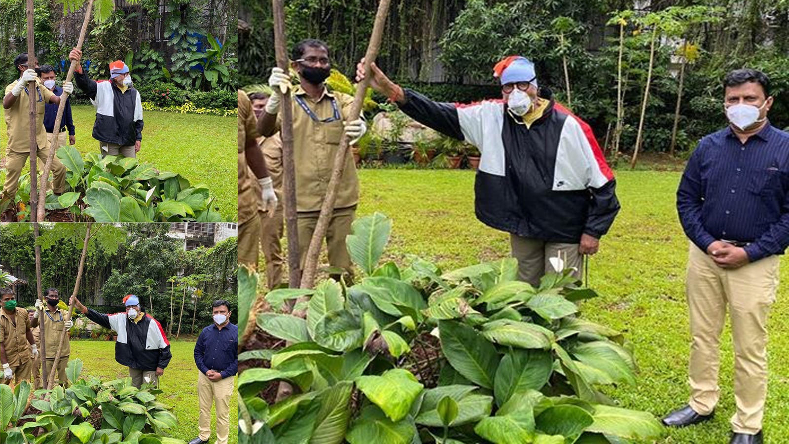 covid-19-survivor-amitabh-bachchan-shares-picturesque-view-of-his-garden-as-he-plants-gulmohar-sapling-on-mother-teji-bachchans-birth-anniversary