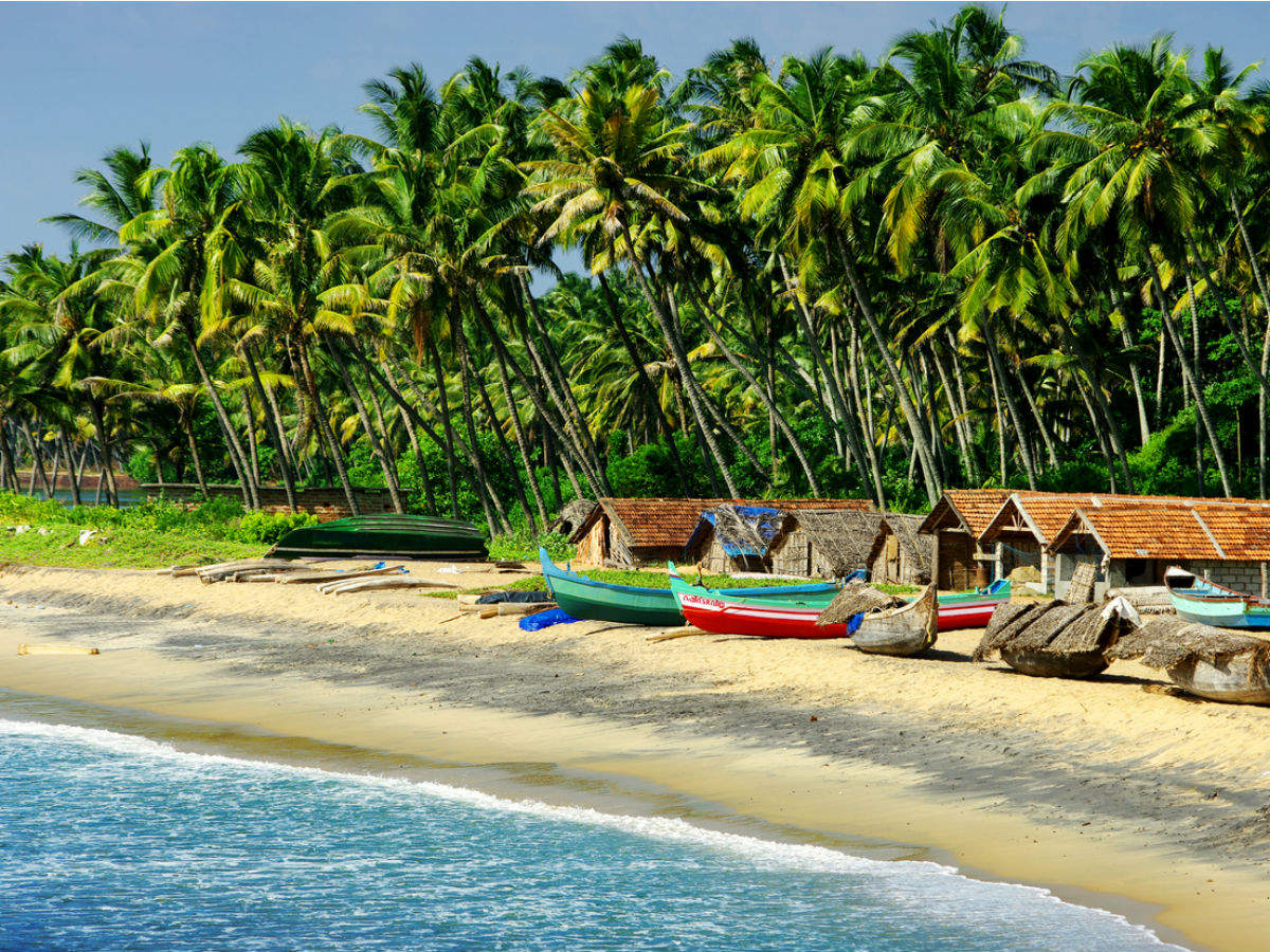Why going to Goa is not the right thing to do right now? Lessons from Shenaz Treasury