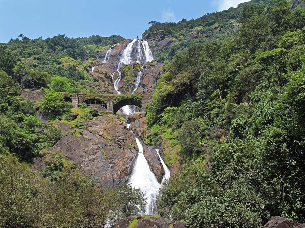 Goa's Dudhsagar waterfalls opens to trekkers