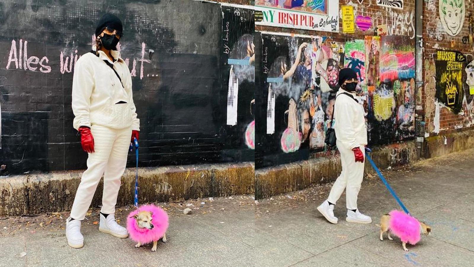 priyanka-chopra-jonas-enjoys-walking-on-german-streets-with-her-pet-pooch-diana-says-everything-will-be-ok