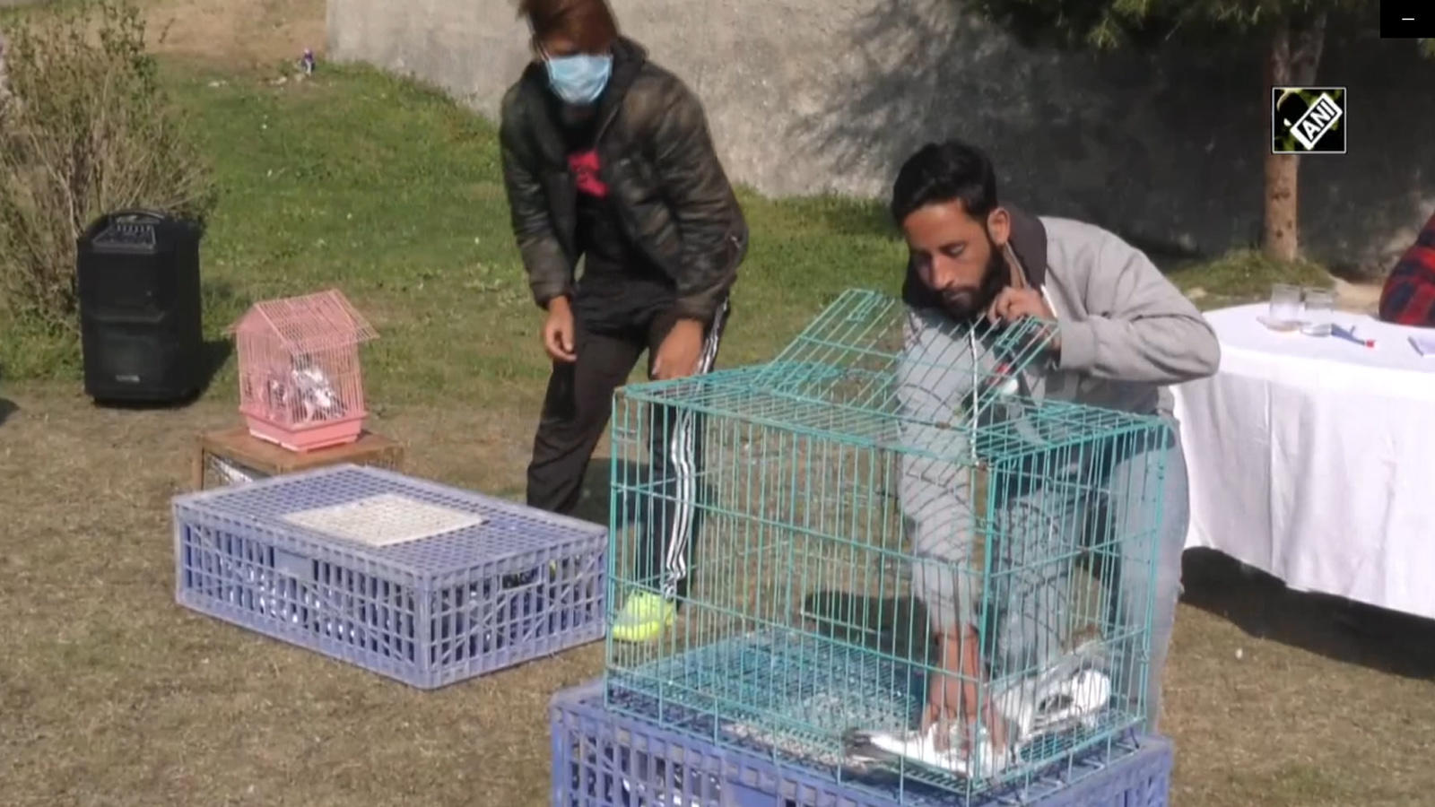 jammu-and-kashmir-indian-army-organizes-pigeon-flying-competition-in-baramulla