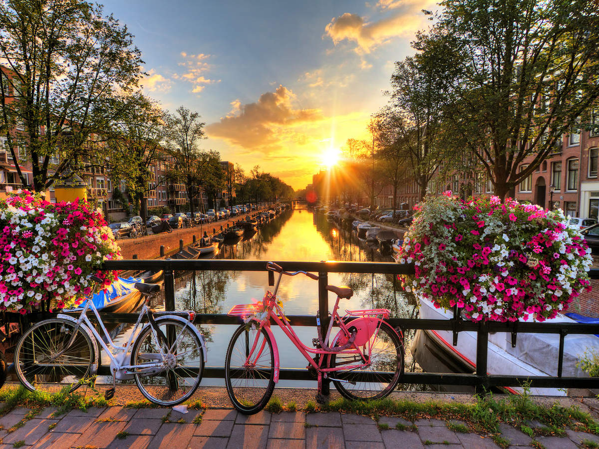 Amsterdam bridges decked with flowers and plants to prevent cyclists from doing this