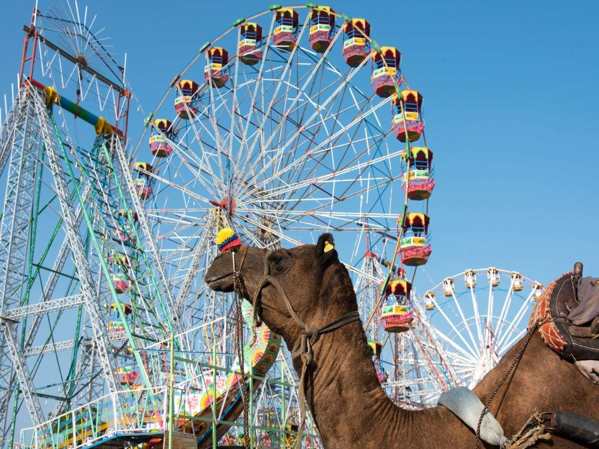 COVID impact: Pushkar Fair likely to be cancelled this year