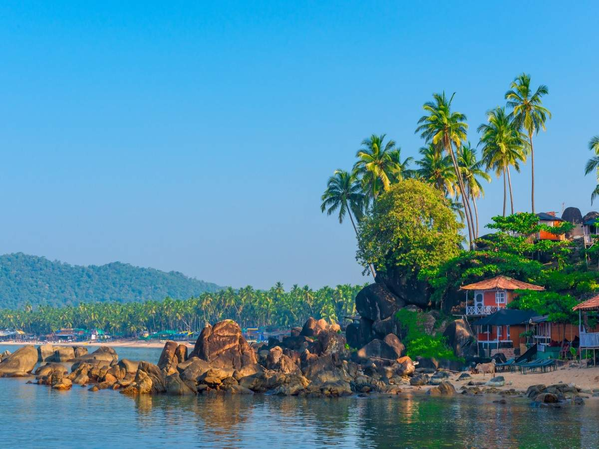 Goa declared as India's most vegan-friendly state