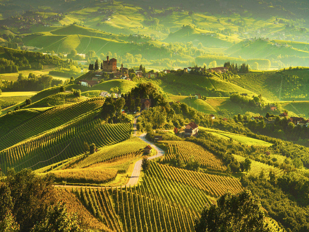 Barolo in Italy named as the City of Wine for 2021