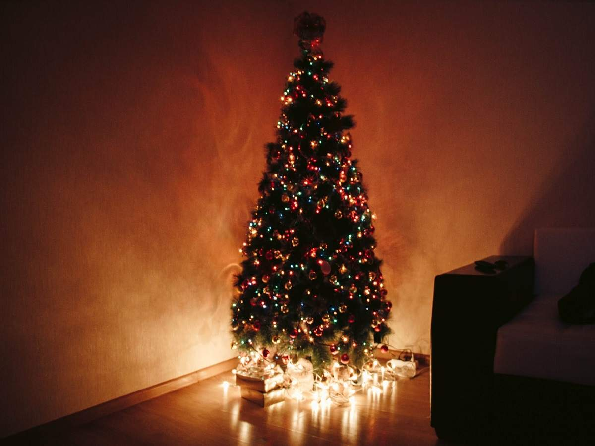 Christmas Tree Decorations Get Over The Regulars And Decorate Your Christmas Tree With These Unique Items Most Searched Products Times Of India