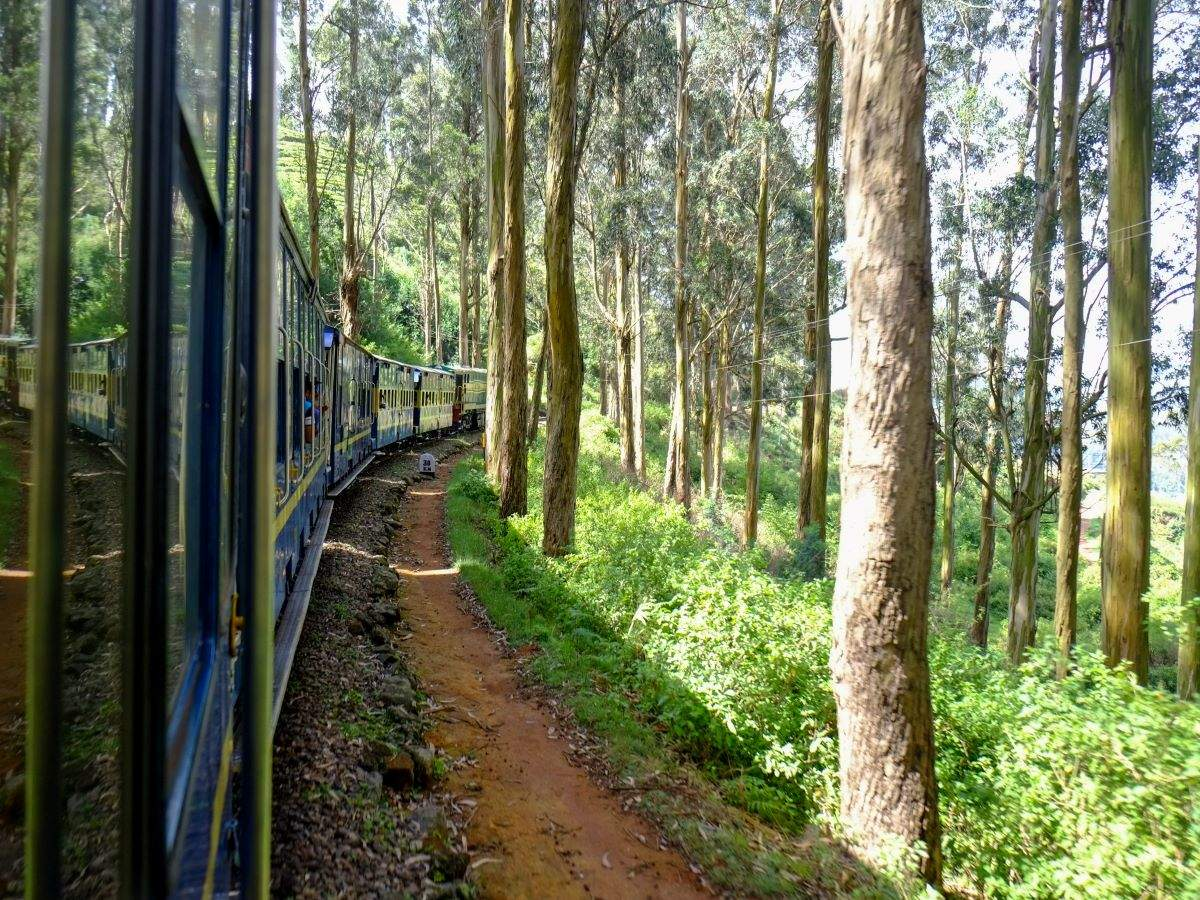 India's most scenic toy train journeys