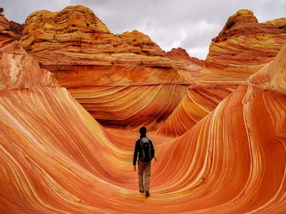 Arizona's star attraction 'The Wave' to increase daily cap of visitors to 64