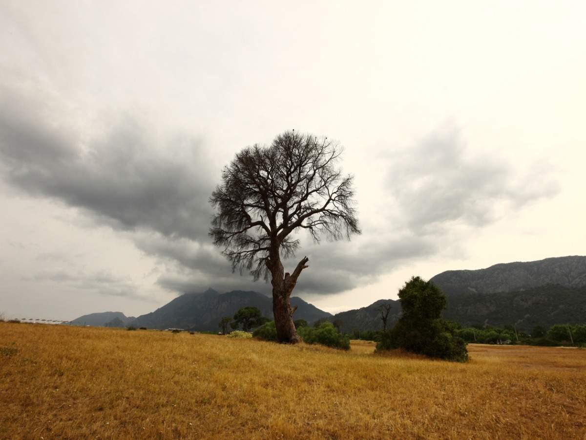 Nagaland's offbeat experiences
