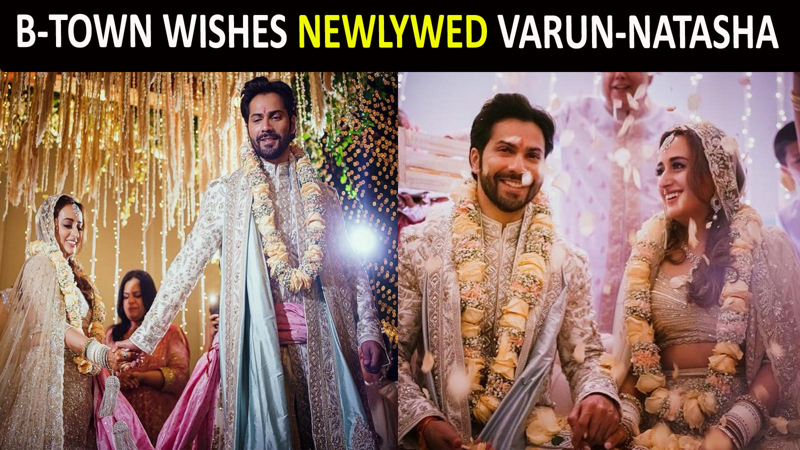 varun-dhawan-natasha-dalal-are-married-from-anushka-sharma-to-deepika-padukone-to-shraddha-kapoor-bollywood-showers-love-on-the-newlywed-couple