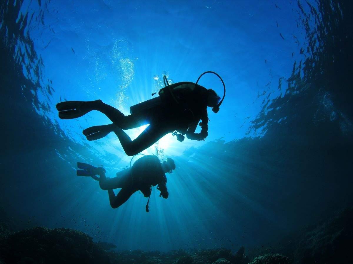 Vizag: Scuba divers discover natural arch underwater near Rushikonda Beach