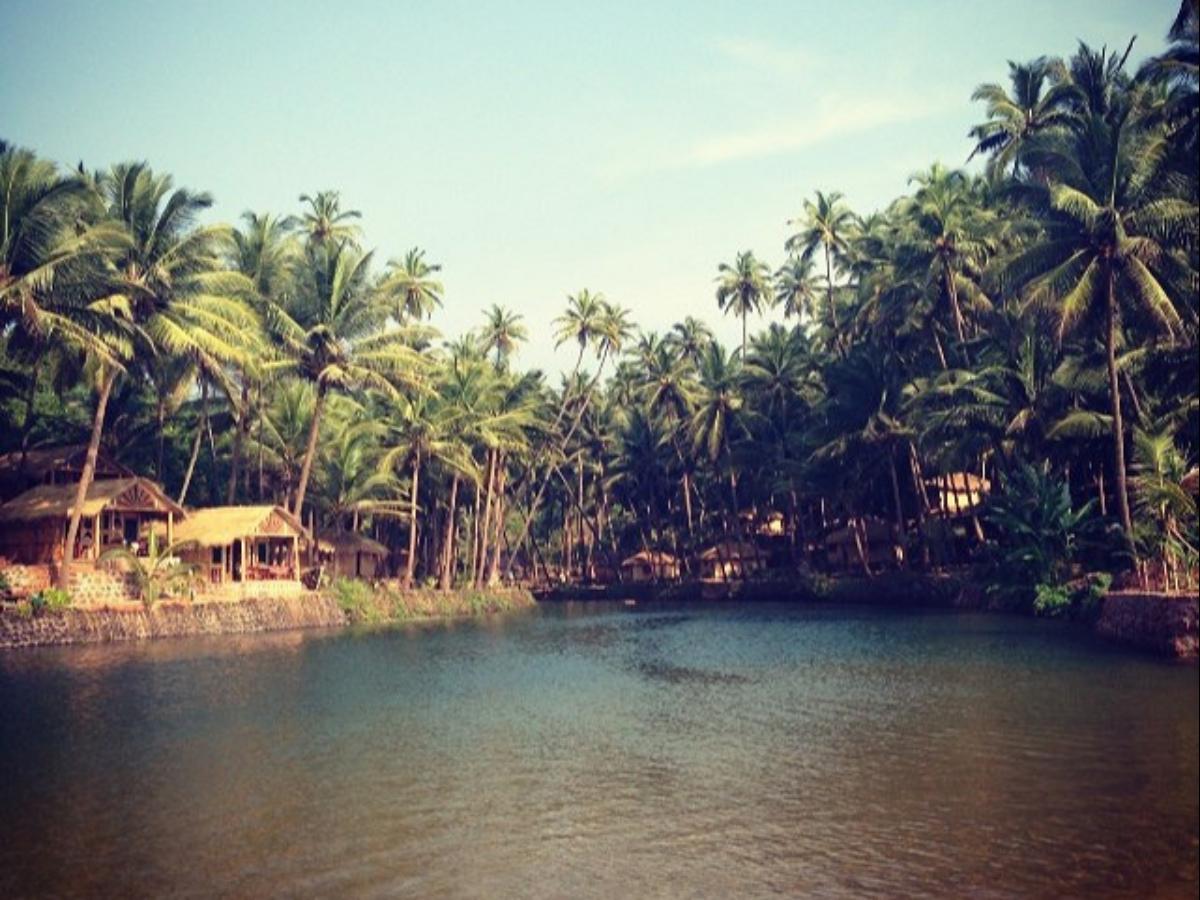 Cola Beach—Goa's hidden gem