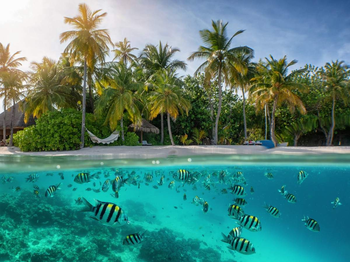 Seychelles pictures that will tempt you to choose your next holiday destination