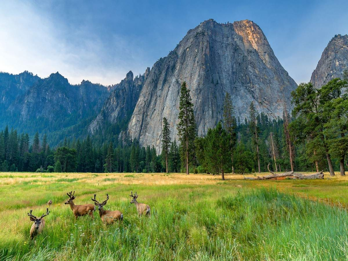 No reservation needed to visit the famous Yosemite National Park