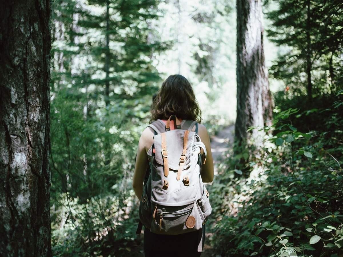 Best hiking destinations in Uttarakhand