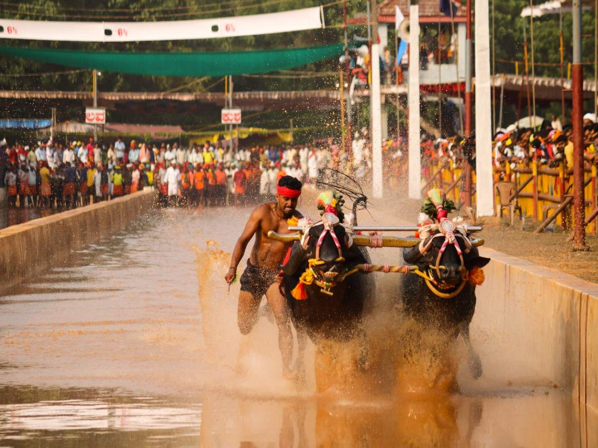The famous five cultural festivals of Karnataka