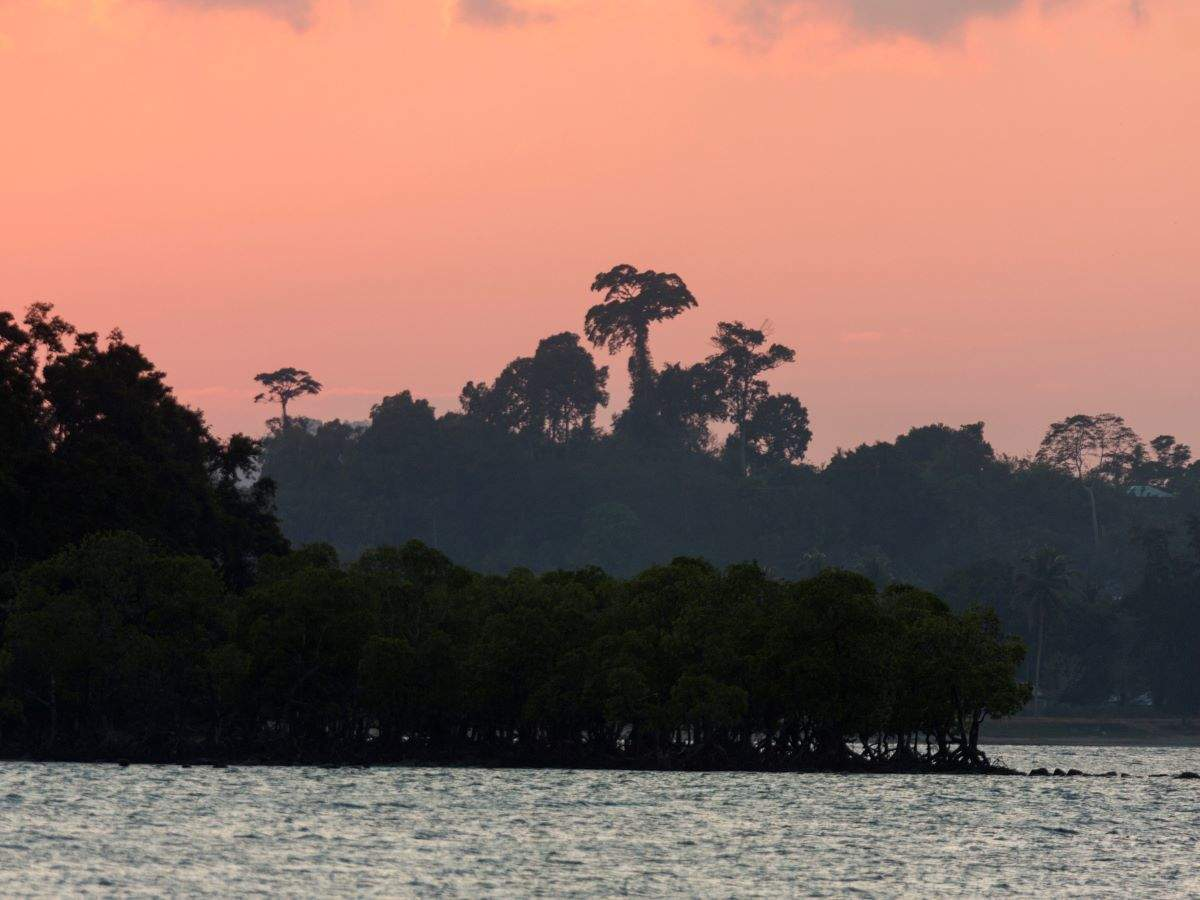 Discovering the secrets of Andaman Islands