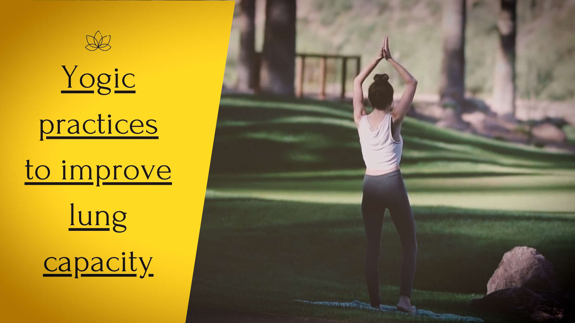 yogic-practices-to-improve-lung-capacity