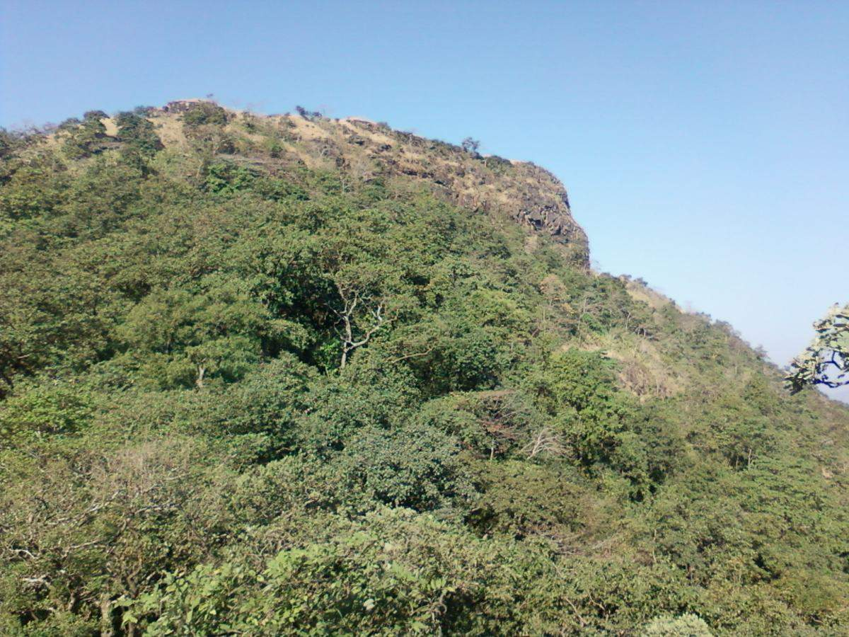 Watch as tourist flout covid rules and overcrowd the Asheri Fort in Maharashtra