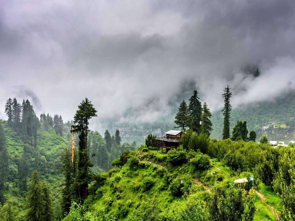 Places in India that turn beautifully green during monsoons