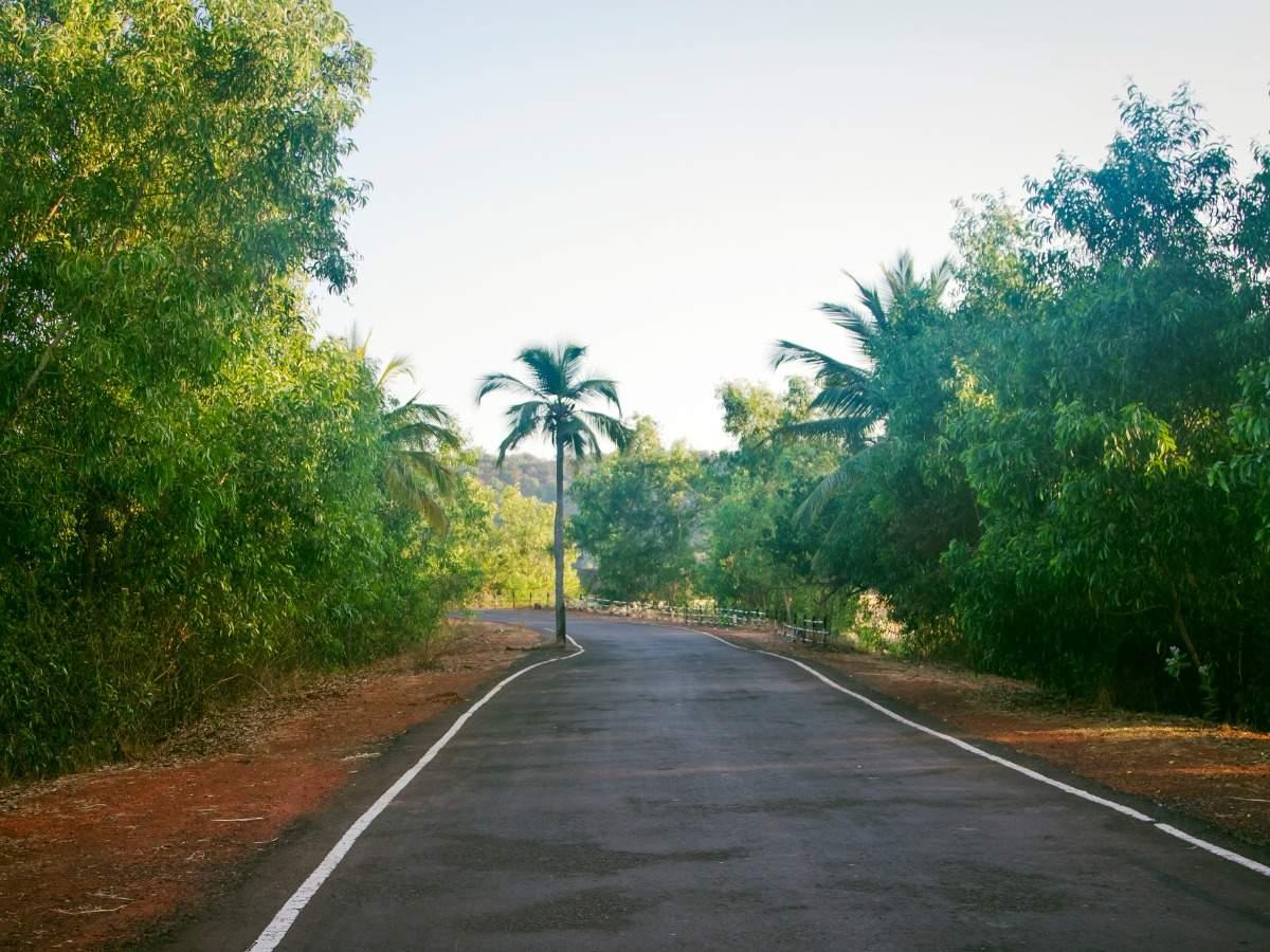 Goa extends COVID lockdown till August 9