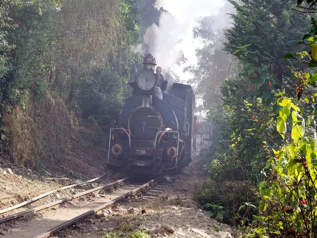 Indian Railways starts jungle tea toy train safari on Darjeeling Himalayan route