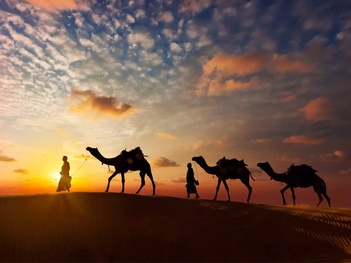 Rajasthan all set to introduce mobile application for tourists on World Tourism Day