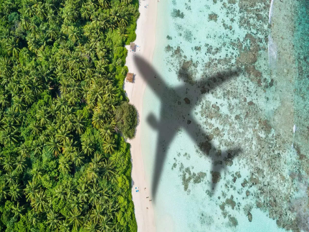 Airlines can operate 85 percent of pre-COVID domestic flights