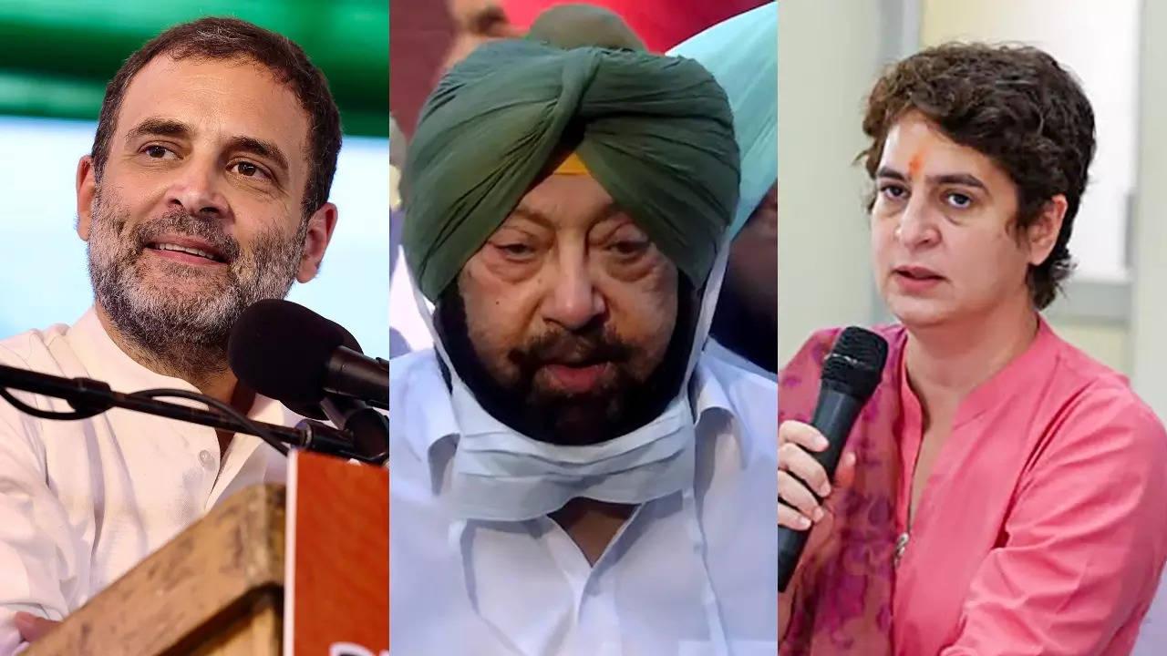 Rahul and Priyanka 'inexperienced', advisers 'misguiding' them: Amarinder Singh