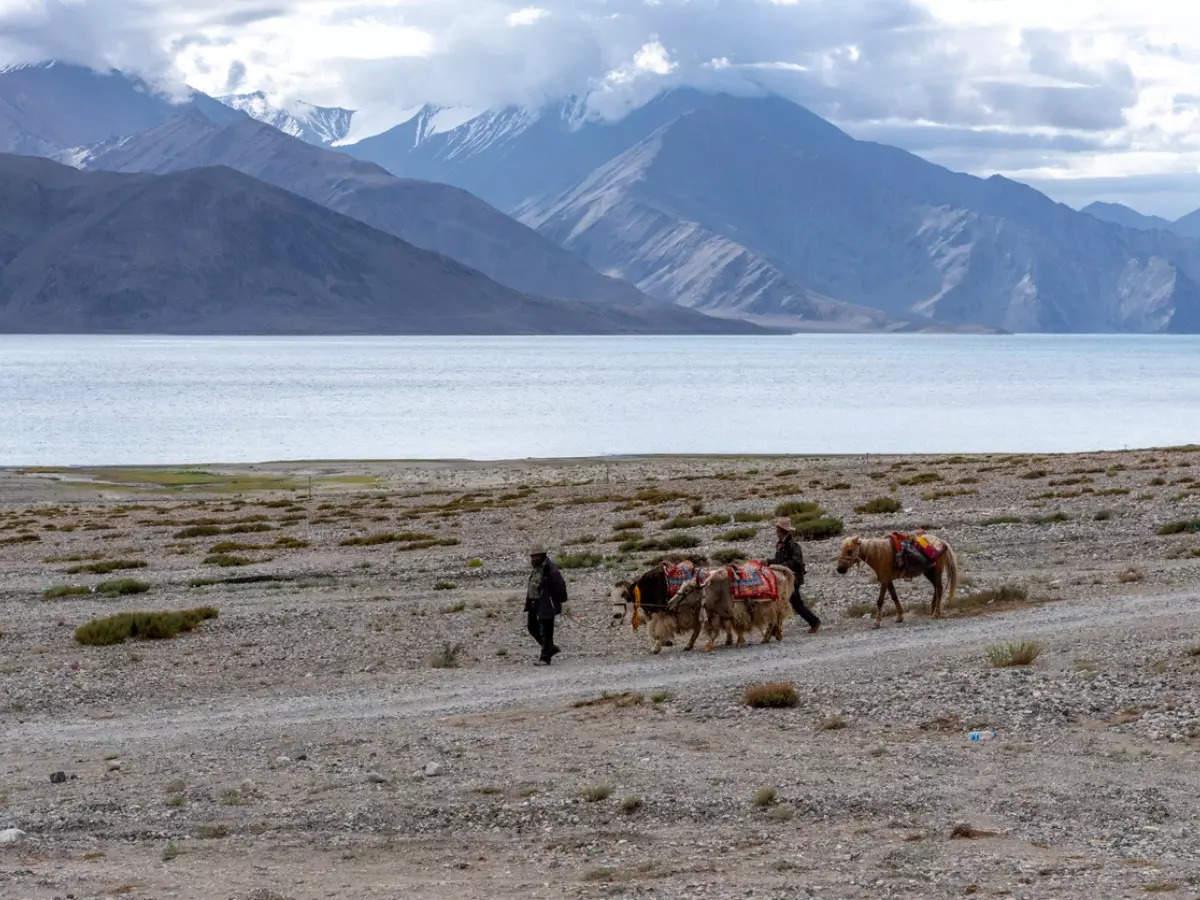 Where to go horseback riding in India?