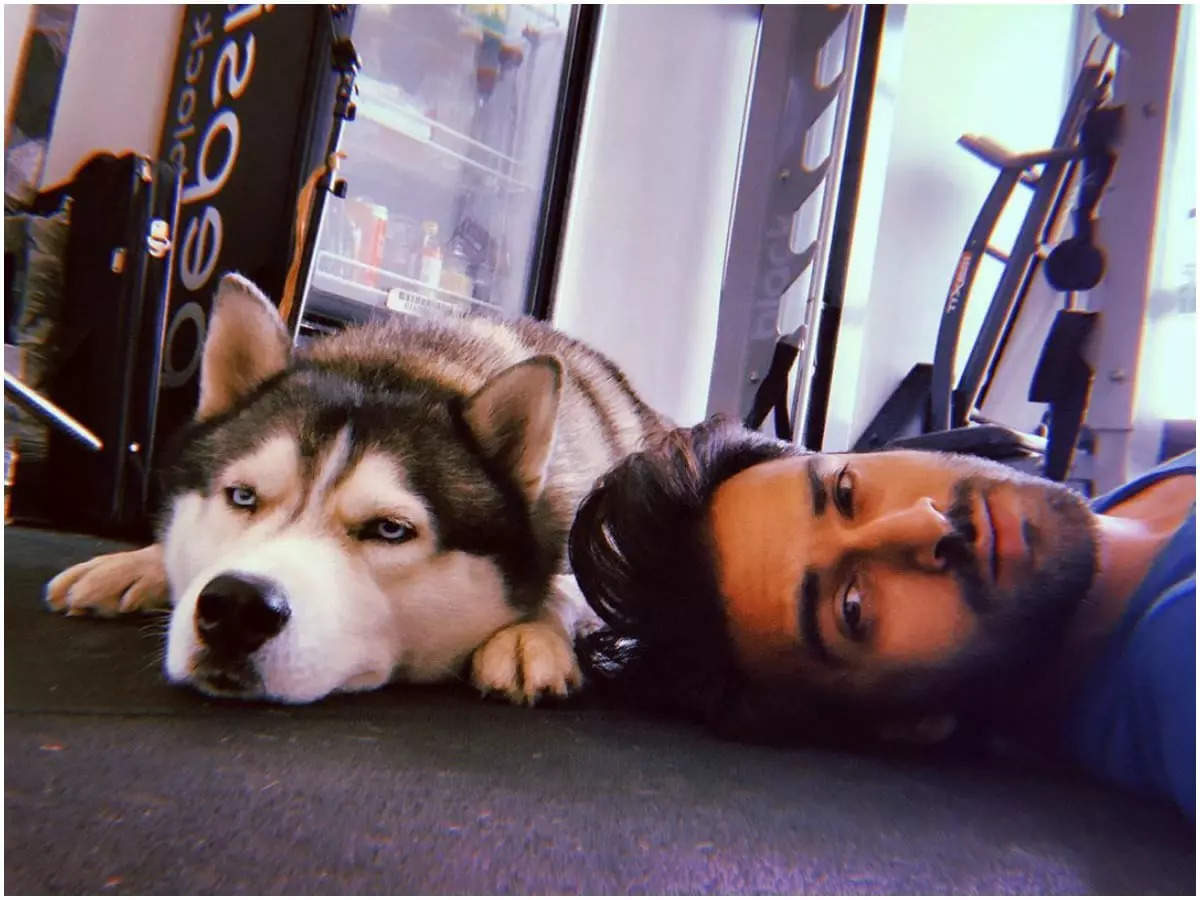 pulkit-samrats-pet-drogo-follows-the-actor-when-it-comes-to-working-out-at-home