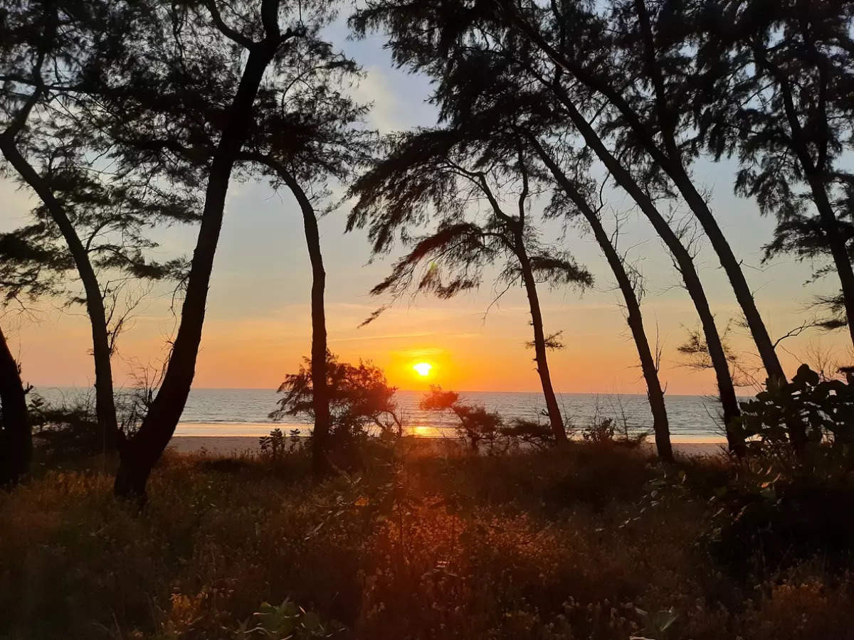 Reasons to visit Goa in autumn