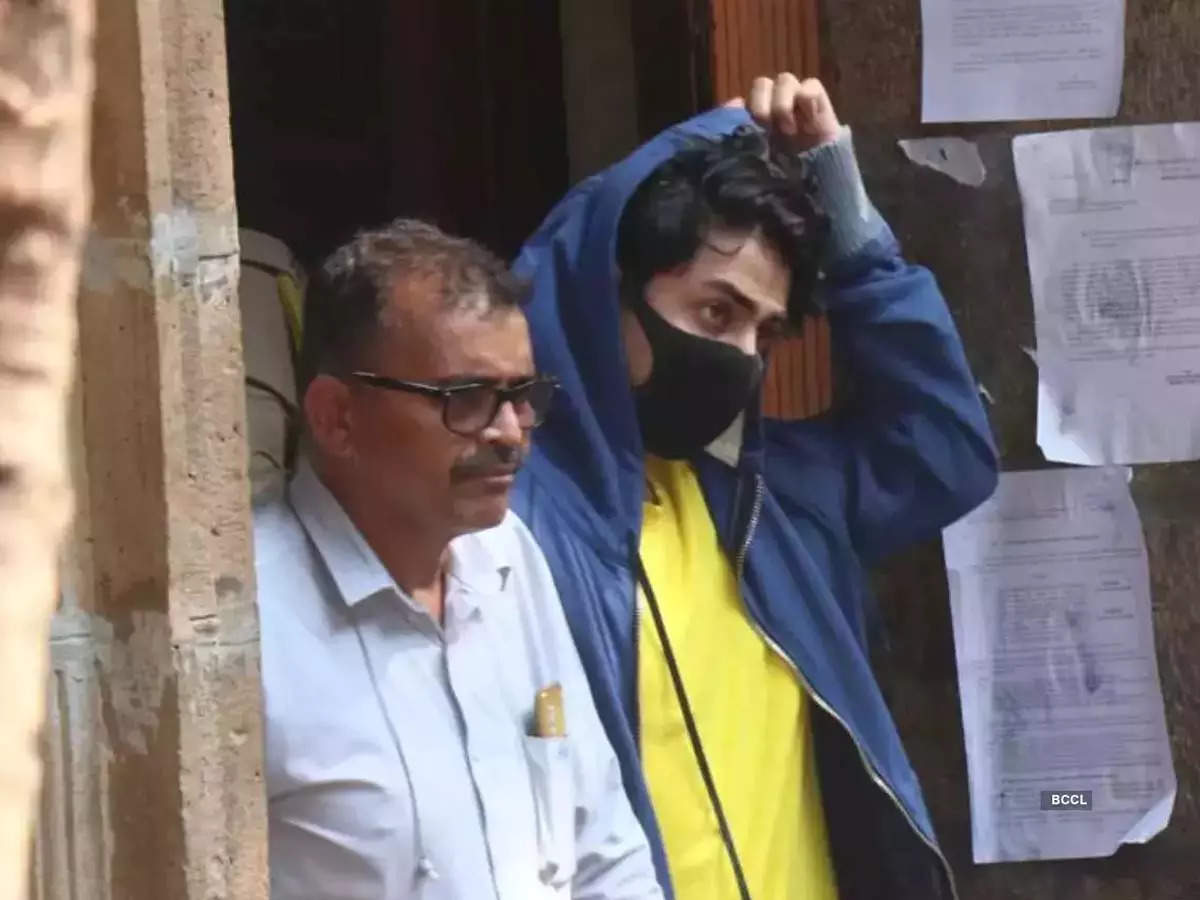 Aryan Khan's lawyer Amit Desai: They have learnt a lesson, they have suffered enough - Times of India