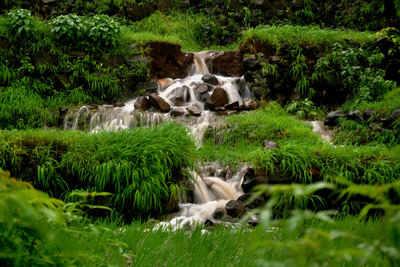 Weekend Getaways From Pune, Places Around Pune, Weekend Trip In Pune