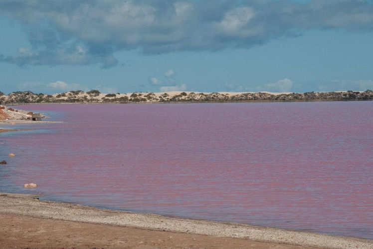 Australia S Pink Beauty Lake Hillier