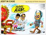 AAP's win