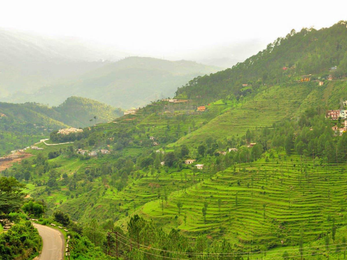 Almora To Nainital Attractions | Almora To Nainital Trip | Times of India  Travel